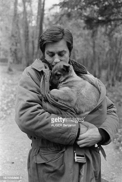 Rendezvous With Alain Delon For Its 41St Birthday Alain DELON dans le parc de sa propriété de DOUCHY serrant dans ses bras un chiot à l'abri dans son...