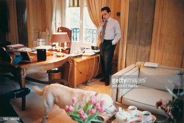 Rendezvous With Nicolas Sarkozy Deputy Mayor Of Neuilly Nicolas SARKOZY au téléphone dans son bureau de la mairie de Neuilly avec son labrador Indy...