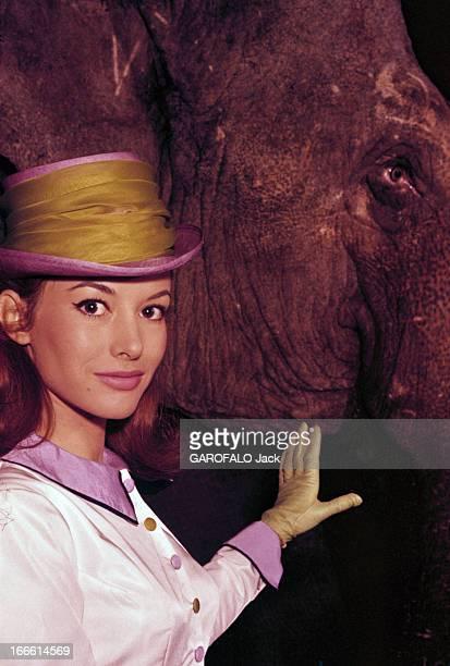 Rendezvous With Pascale Audret France Pascale AUDRET actrice française en tenue de cavalière un chapeau décoré d'un large foulard jaune veste blanche...