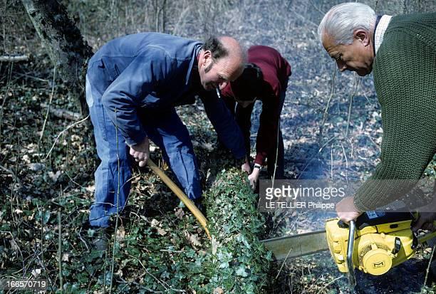 Rendezvous With Prince Louis Napoleon En avril 1968 le prince LOUIS NAPOLEON tronçonnant un tronc d'arbre avec une tronçonneuse en compagnie de deux...