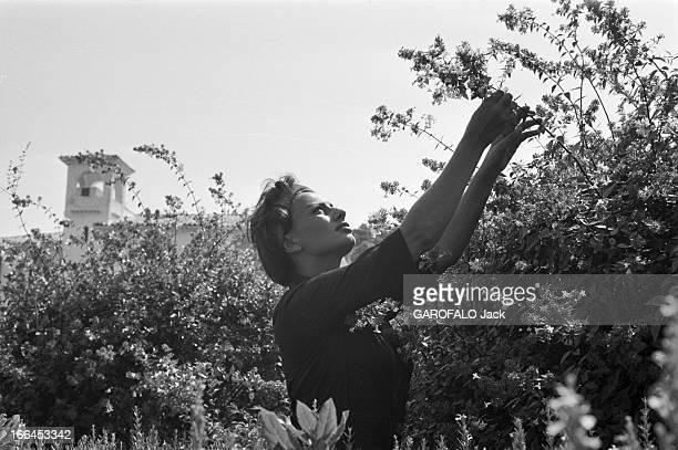 Rendezvous With Sophia Loren And Carlo Ponti. France, Saint-Tropez, 10 septembre 1958, l'actrice italienne Sophia LOREN et son époux Carlo Ponti,...