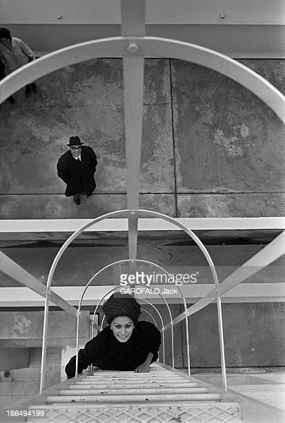 Rendezvous With Sophia Loren And Carlo Ponti In Their Apartment In Paris France Paris 17 novembre 1964 l'actrice italienne Sophia LOREN s'installe...