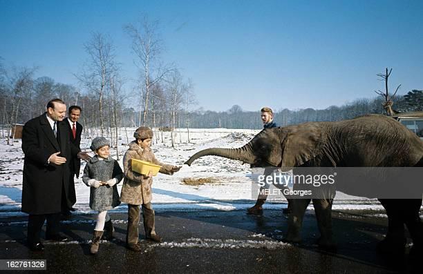 Rendezvous With The Prince Reza Pahlavi En France en février 1970 à l'occasion de la visite du zoo de Château de Thoiry le Prince Raza PAHLAVI...