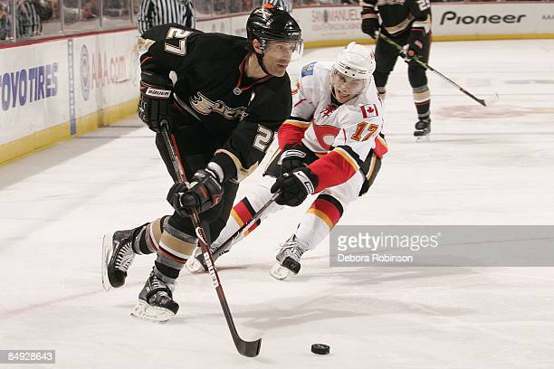 Rene Bourque of the Calgary Flames reaches in for the puck against Scott Niedermayer of the Anaheim Ducks during the game on February 11 2009 at...