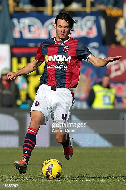 Rene Krhin of Bologna FC in action during the Serie A match between Bologna FC and AS Roma at Stadio Renato Dall'Ara on January 27 2013 in Bologna...