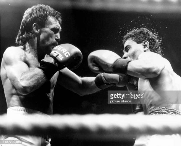 Rene Weller und sein französischer Gegner Jose Maillot während des Fights in Karlsruhe am 531988 Der 34jährige Pforzheimer BoxProfi Rene Weller hat...