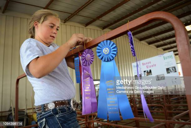 Renee Eisele with the Rinn Valley 4H Club hangs her ribbon after winning Grand Champion Market Goat at the Boulder County Fair Wednesday August 07...