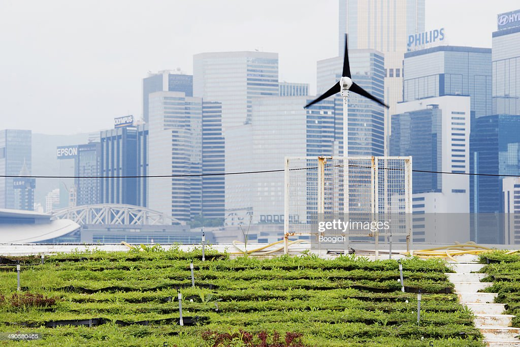 Renewable Energy Green Urban Farming in Hong Kong China : Stock Photo