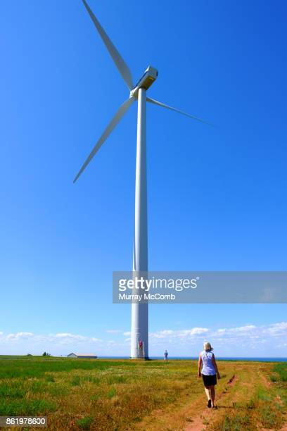 renewable energy plants. size matters. - murray mccomb stock pictures, royalty-free photos & images