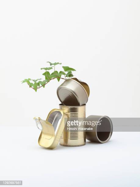 renewable waste still life - tin can stock pictures, royalty-free photos & images
