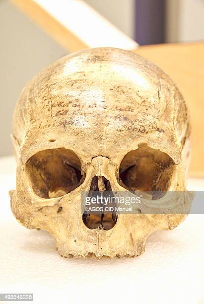 Reopening of the Musee de L'Homme in Paris after six years of work; September 23, 2015. The skull of the philosopher René Descartes property of the...