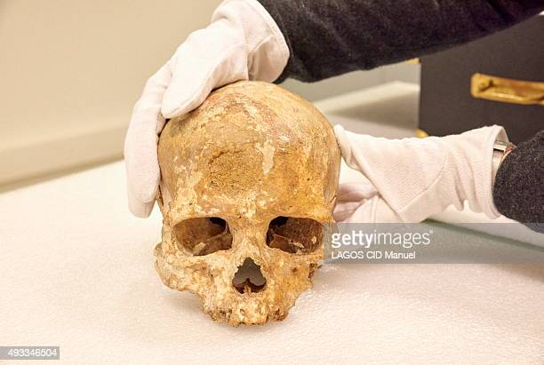 Reopening of the Musee de L'Homme in Paris after six years of work; September 23, 2015. The skull of a Cro-Magnon man.