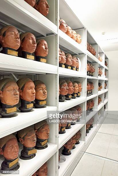 Reopening of the Musee de L'Homme in Paris after six years of work; September 23, 2015. Collection of moldings stored in the reserves.
