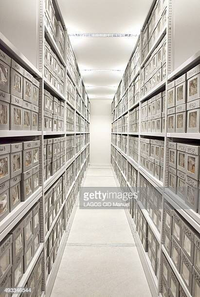 Reopening of the Musee de L'Homme in Paris after six years of work; September 23, 2015. Skulls stored in the reserves.
