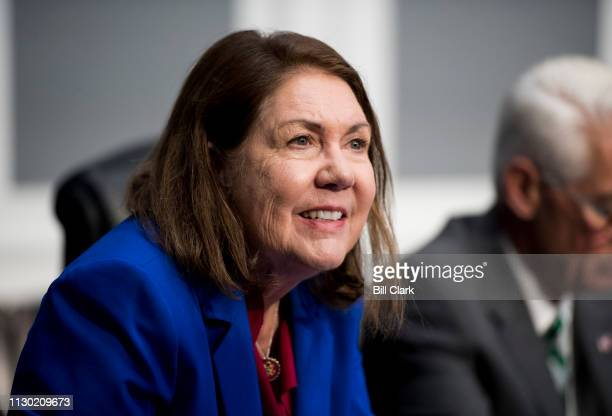 Rep Ann Kirkpatrick DAriz takes her seat for the House Appropriations Subcommittee on Financial Services and General Government Subcommittee hearing...