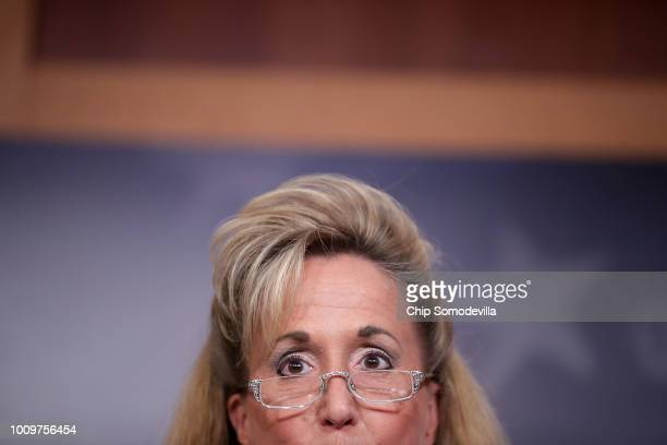 Rep Ann Wagner hold a news conference about her proposed paid family leave bill during a news conference at the US Capitol August 2 2018 in...