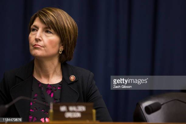 Rep Cathy McMorris Rodgers attends a House Energy and Commerce Environment and Climate Change Subcommittee hearing on Capitol Hill on April 2 2019 in...
