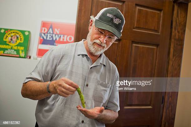Rep. Dan Newhouse, R-Wash., inspects an especially large hop, on his farm that also grows grapes and fruit trees, outside of Sunnyside, Wash., August...