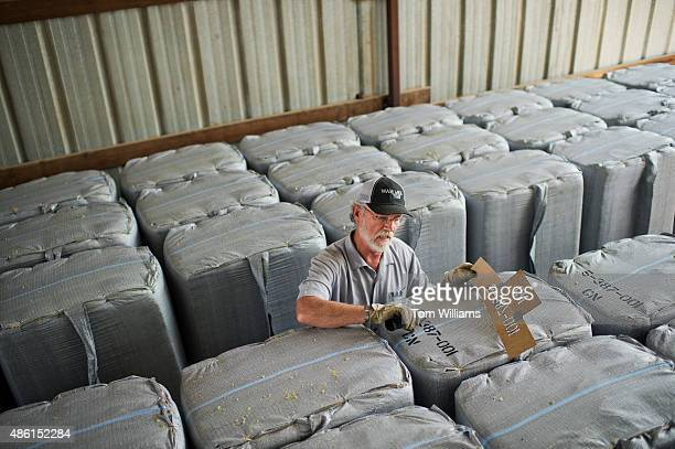 Rep Dan Newhouse RWash stencils hop bails on his farm that also grows grapes and fruit trees outside of Sunnyside Wash August 27 2015 About 79...