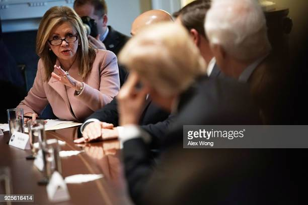S Rep Marsha Blackburn speaks as President Donald Trump meets with bipartisan members of the Congress at the Cabinet Room of the White House February...
