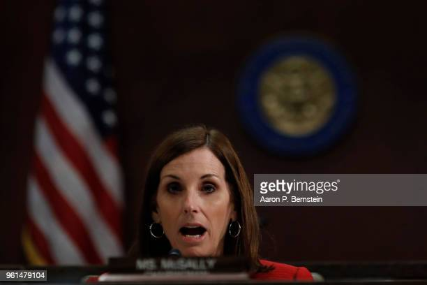 Rep Martha McSally asks a question as border security officials testify before the House Homeland Security Committee's Border and Marine Security...