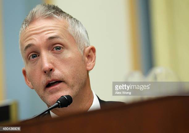 Rep. Trey Gowdy speaks during a hearing before the House Judiciary Committee June 11, 2014 on Capitol Hill in Washington, DC. The committee held a...