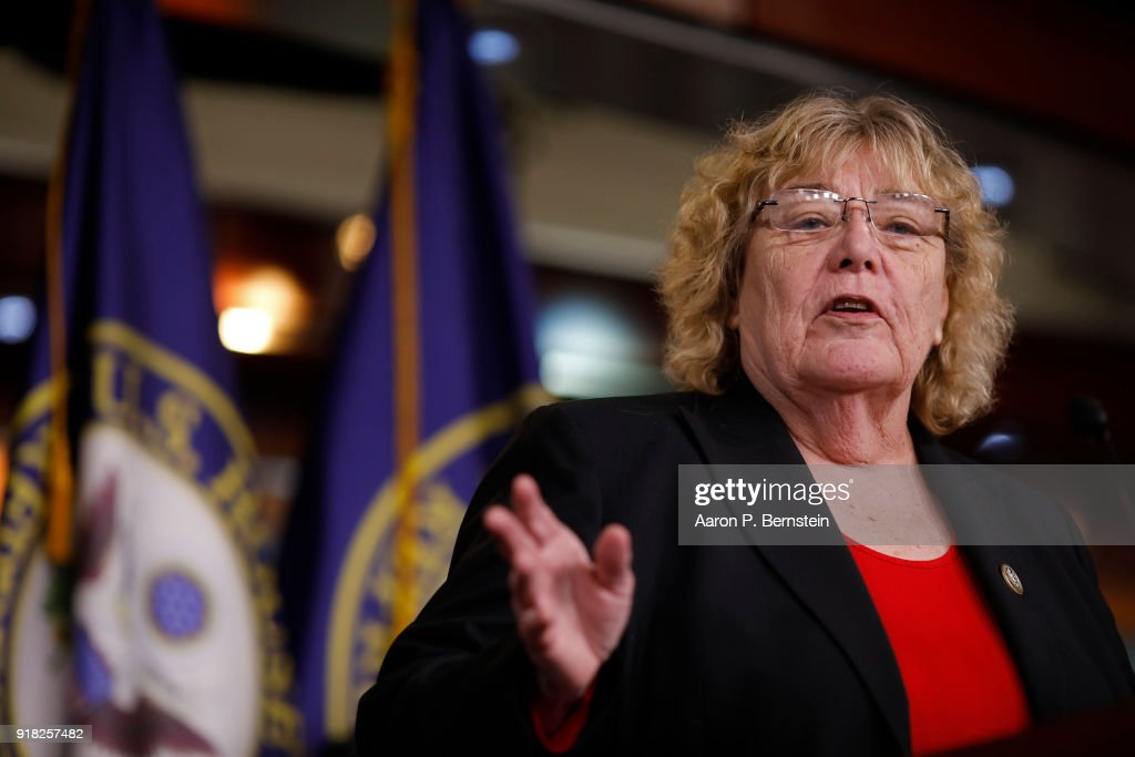 Rep. Zoe Lofgren (D-CA) speaks at a press conference on Capitol Hill on February 14, 2018 in Washington, DC. Pelosi and her fellow Democrats addressed the need for heightened security surrounding the nation's voting systems ahead of the 2018 midterms.