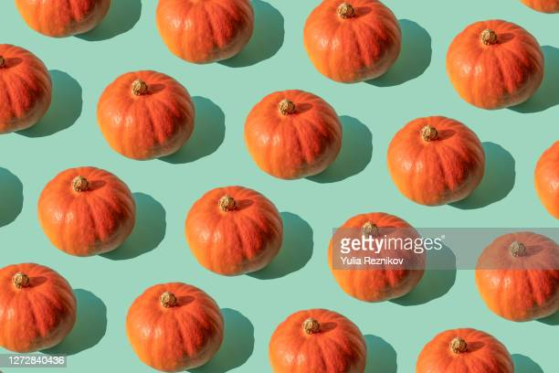 repeated pumpkin (hokkaido) on the turquoise background - riesenkürbis stock-fotos und bilder