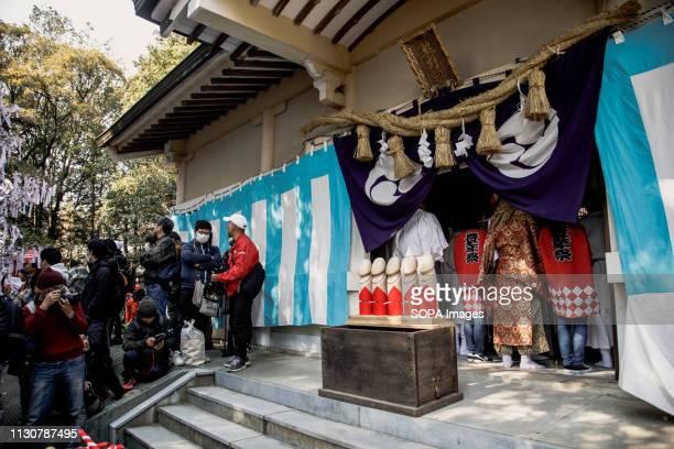 Replicas of phalluses seen at the shrine during the festival Honen festival is a traditional famous festival in Tagata Jinja Shrine komaki Aichi...