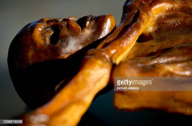 Replication of Oetzi the Iceman is on display as part of the exhibition Oetzi 2.0 at the state archeaological museum in Munich, Germany, 06 February...