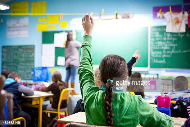 Reportage in Les Helices Vertes primary school in Cerny France Year 5 year 6 multilevel class