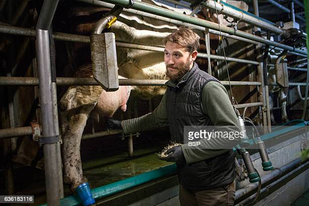 Reportage on organic producers working using a communityshared agriculture model in HauteSavoie France JeanPhilippe has been an organic cattle and...