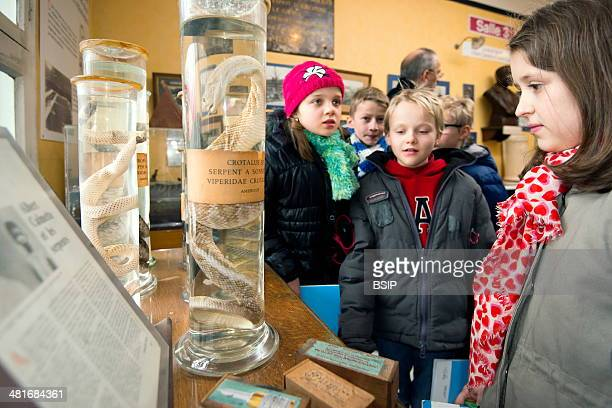 Reportage on the Kid Campus workshops run by the Pasteur Institute in Lille Each week in January and February the Institute welcomes year 5 6 pupils...