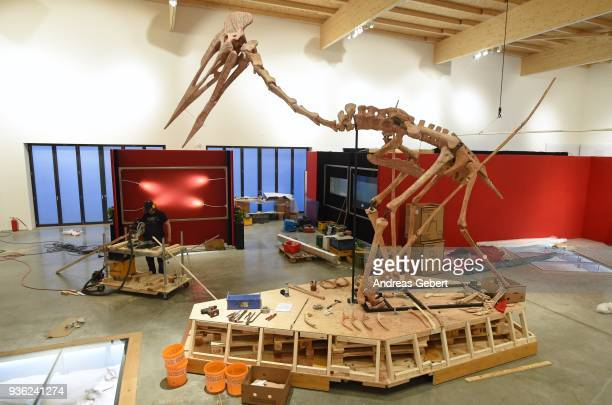 A representation of what museum officials claim is the world's biggest discovered winged dinosaur stands in an exhibition hall prior to its...