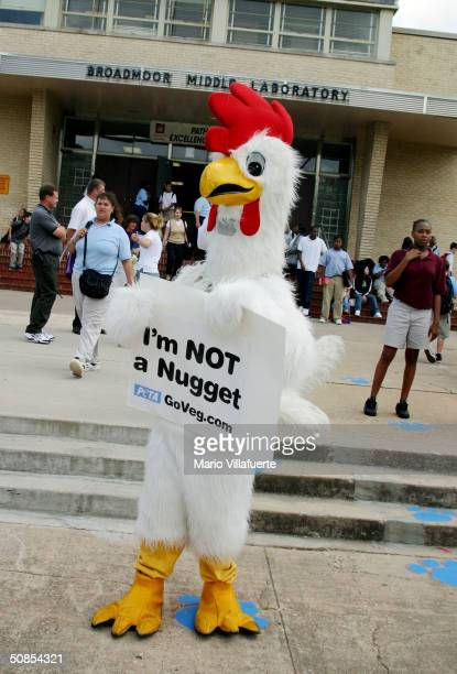 Representative for the People for the Ethical Treatment of Animals , Ravi Chand, stands in a chicken costume on the sidewalk at Broadmoor Middle...