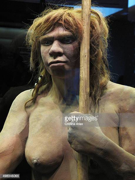 Reproduction of a Neanderthal woman of Sidon Cave in Asturias, rooms of prehistory at the National Archaeological Museum in Madrid, Spain.