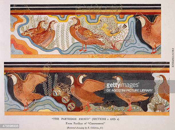 Reproduction of fresco of Partridges Palace of Minos Knossos title page of The palace of Minos a comparative account of the successive stages of the...