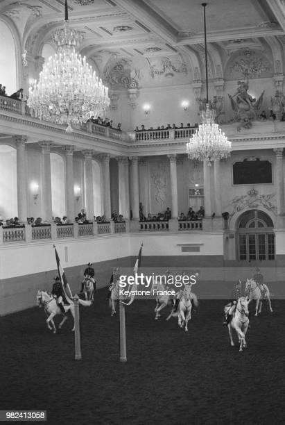 Représentation de l'école d'équitation espagnole lors de la visite de la reine Elizabeth II à Vienne en Autriche le 7 mai 1969