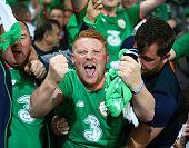 republic ireland fans celebrateduring fifa world
