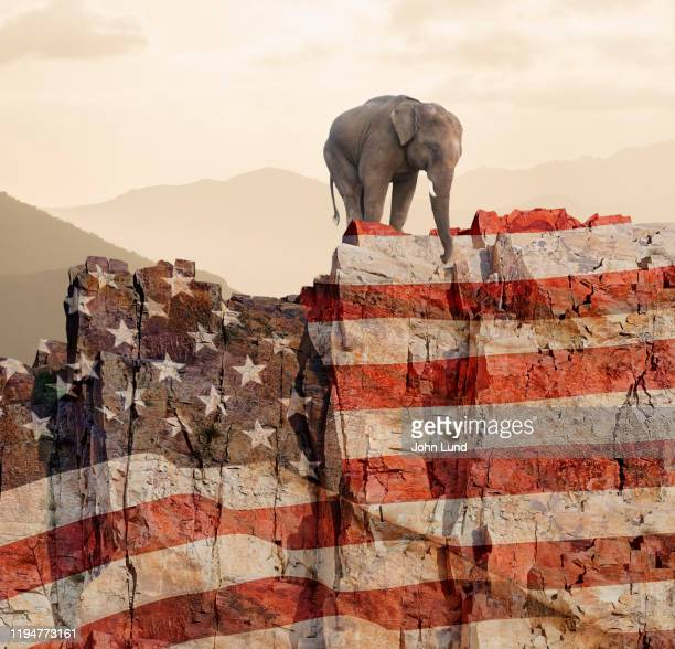 republican elephant at the edge of a cliff - partisan politics stock pictures, royalty-free photos & images