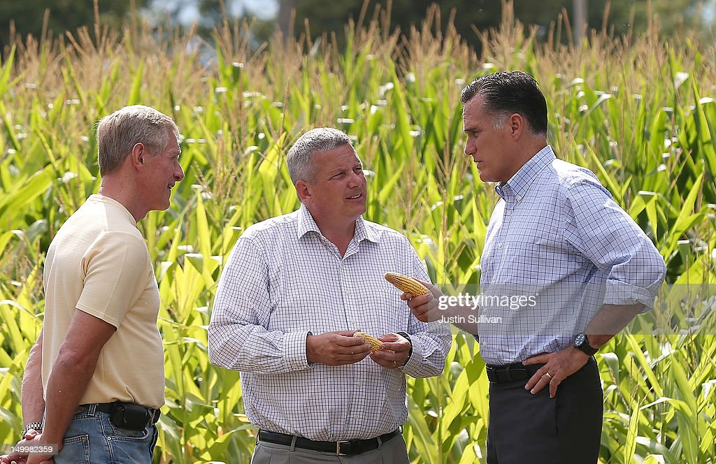 Republican presidential candidate and former Massachusetts Gov. Mitt Romney (R) looks at corn with Iowa Secretary of Agriculture Bill Northey (C) and farmer Lemar Koethe (L) on August 8, 2012 in Des Moines, Iowa. Mitt Romney is campaigning in Iowa before traveling to New Jersey and New York for fundraising events.