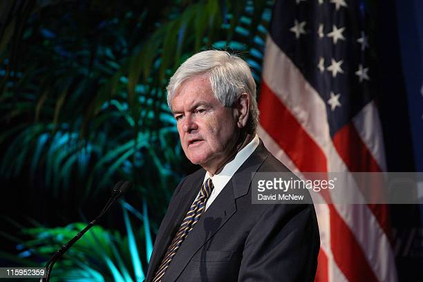 Republican presidential candidate former Speaker of the House Newt Gingrich delivers a foreign policy address to the Republican Jewish Coalition as...