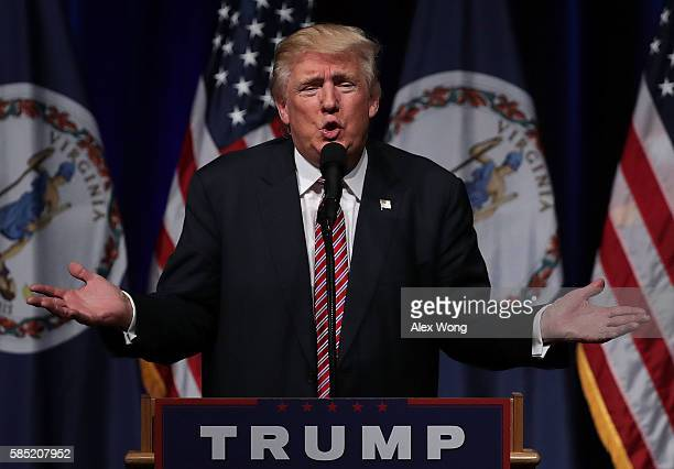 Republican presidential nominee Donald Trump speaks at a campaign event at Briar Woods High School August 2, 2016 in Ashburn, Virginia. Trump...