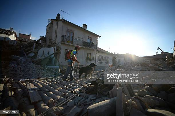 TOPSHOT Rescue and emergency services personnel searches for victims with a dog in the central Italian village of Amatrice on August 24 2016 after a...