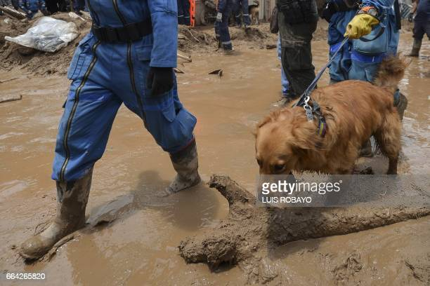 A rescue dog and his guide after inspecting a destroyed house following mudslides caused by heavy rains in Mocoa Putumayo department Colombia on...