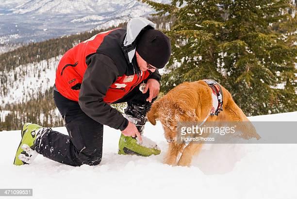 Rescue Dog working