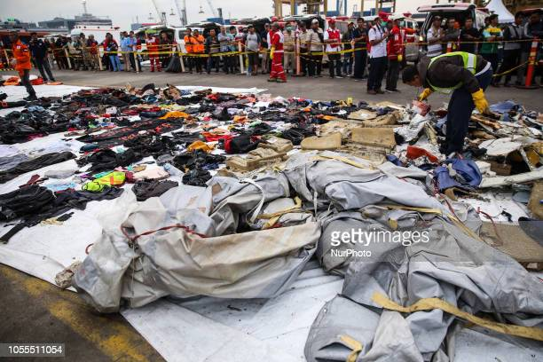 A rescue team collect debris from a crashed plane at Tanjung Priok Harbour Jakarta Indonesia on Tuesday October 30 2018 Rescuers have recovered human...