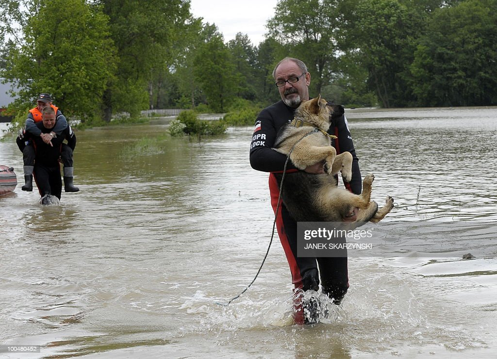 A Rescue team member carries on his back a man as another one helps a dog to escape from flooded streets in Juliszew village in central Poland at Wisla river on May 24, 2010. The death toll from flooding in Poland rose to 15 Monday as torrential rain swelled major rivers to levels unseen in more than a century and rescuers from across Europe battled to prevent further tragedy. Interior Minister Jerzy Miller said flood levels on the Vistula, the country's largest river, were 'worse than expected', raising the risk that flood defences around the capital could burst.