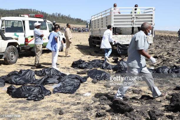TOPSHOT Rescue team walk past collected bodies in bags at the crash site of Ethiopia Airlines near Bishoftu a town some 60 kilometres southeast of...