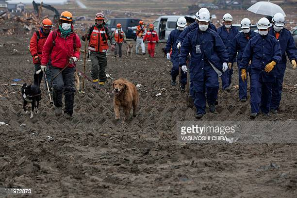 Rescue teams search for victims during a joint operation with the Metropolitan Police Department in Rikuzentakata Miyagi prefecture on April 9 2011...
